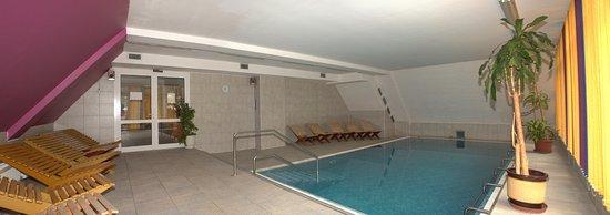 Hotel Harrachovka: Bazén