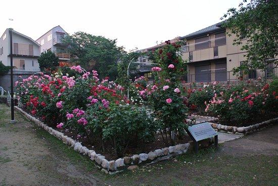 Iwagedaira Park