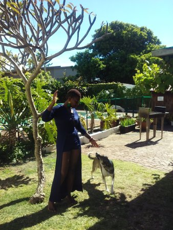 Aqua Marine Guesthouse: I and my son enjoyed our stay..lovely breakfast , nice accomodation plus de owner Cathy very fri