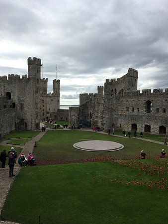 Caernarfon, UK: photo6.jpg