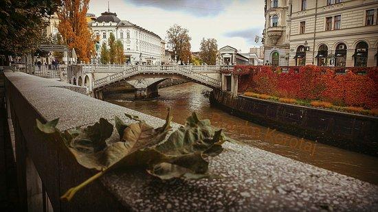 Τριπλή Γέφυρα: edited_IMG_20161021_182704_large.jpg