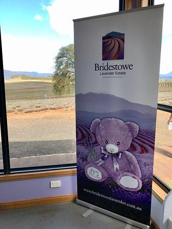 Tasmania, Australia: photo1.jpg