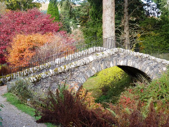 Marvellous Swiss Bridge Dawyck  Picture Of Dawyck Botanic Garden Peebles  With Interesting Dawyck Botanic Garden Swiss Bridge Dawyck With Archaic Connells Welwyn Garden City Also Worms In Garden In Addition Gardeners Com And Garden Ferns As Well As Bottle Garden For Sale Additionally Soil For A Raised Garden Bed From Tripadvisorcouk With   Interesting Swiss Bridge Dawyck  Picture Of Dawyck Botanic Garden Peebles  With Archaic Dawyck Botanic Garden Swiss Bridge Dawyck And Marvellous Connells Welwyn Garden City Also Worms In Garden In Addition Gardeners Com From Tripadvisorcouk
