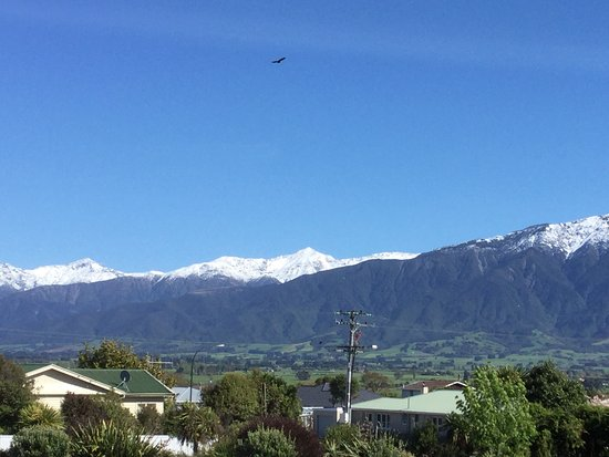 Bella Vista Motel Kaikoura: Fantastic views!