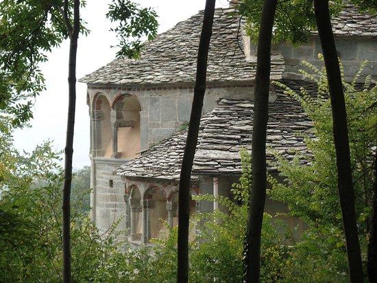 Villar San Costanzo, Italy: Per scattare, ho dovuto calarmi nel ripido bosco in mezzo ai rovi. E si vede poco.