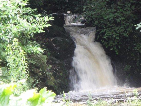 Menai Bridge, UK: Cadnant Falls