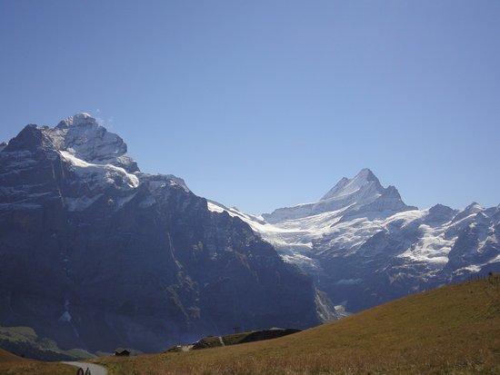 Grindelwald, Swiss: DSC01306_large.jpg