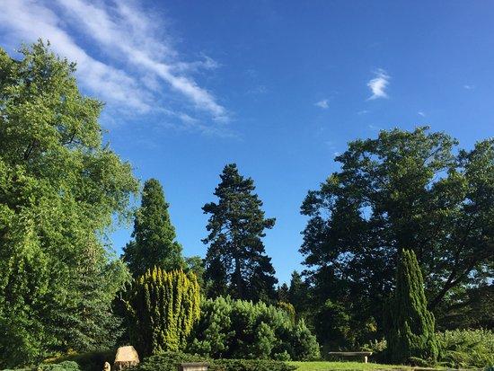 Parc Arboretum du Manoir aux Loups