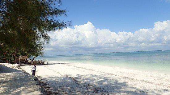 Michamvi Sunset Bay Resort Bild