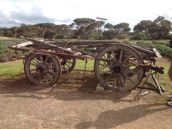 Kingscote, Australia: A very old wagon