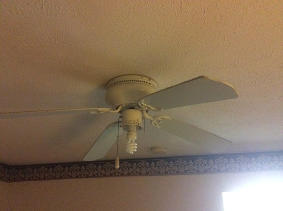 Fairview, TN: Dirty ceiling fan with no light fixture globe