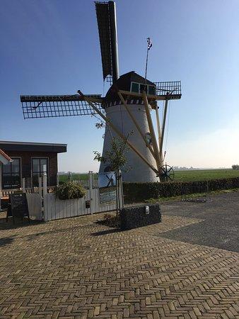 Scharendijke, Nederland: photo0.jpg