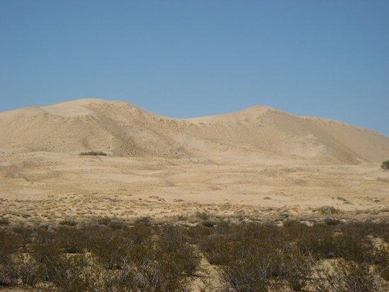 Essex, แคลิฟอร์เนีย: Dunes