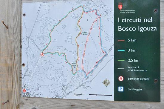 Basovizza, Ιταλία: Connubio sport e ambiente naturale