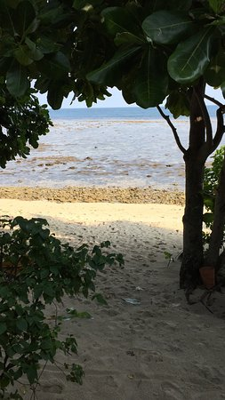 Pulau Joyo: view from our palace