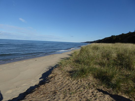 Saugatuck, MI: Beautiful view of the beach