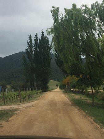 Santa Cruz, شيلي: Quedanos encantados con la viña y su concepto biodinámico.  Vista panorámica del valle, una viña