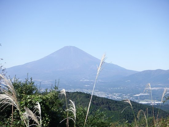 Yaguradake