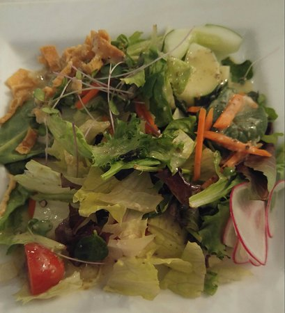 Amherst, NY: HOUSE GARDEN SALAD - field greens, carrots, cucumbers, tomato, radishes, sprouts & wontons