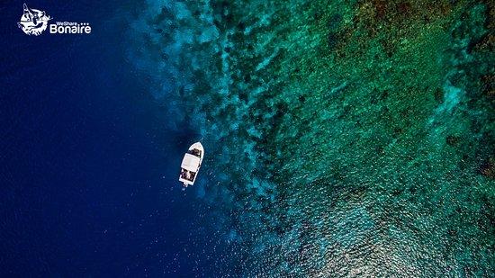 Kralendijk, Bonaire: Boat diving with Carib Inn.
