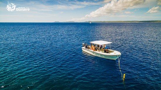 Kralendijk, Bonaire: Boat diving with Carib Inn at Klein Bonaire.