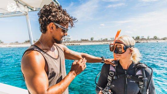 Kralendijk, Bonaire: Dive Instructions at Carib Inn.