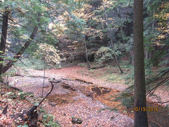Hocking Hills State Park: This along the trail to ash falls