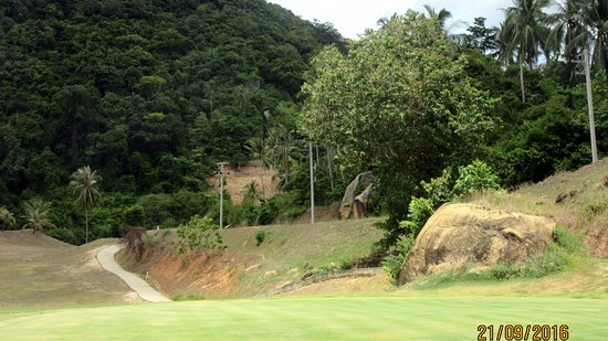 Royal Samui Golf and Country Club : green 4 - looking back