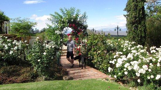 Robertson, Republika Południowej Afryki: Garden