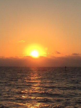 Ράσκιν, Φλόριντα: photo0.jpg