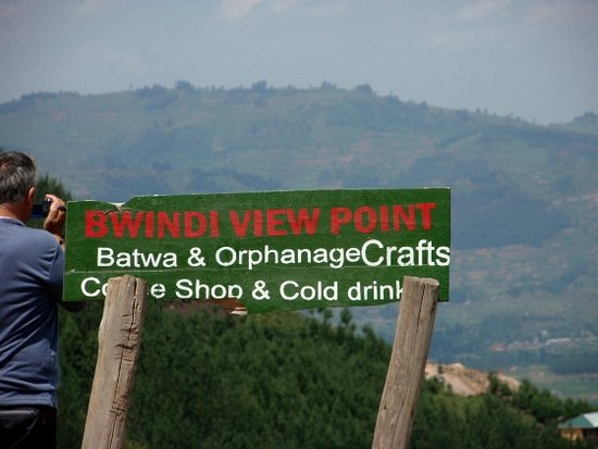 Bwindi Impenetrable National Park: View point suylla foresta