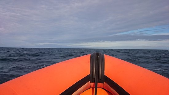 Gairloch, UK: The view from our seats at the front.