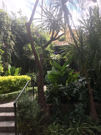 Hacienda El Santuario: photo4.jpg
