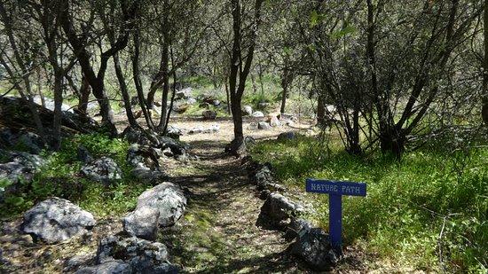 Mariposa, CA: Nature path to the seasonal creek