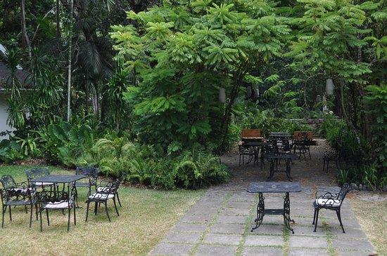 Au Cap, Seychelles: Le jardin