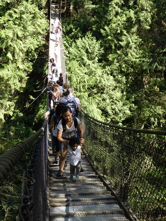North Vancouver, Canadá: Lynn Canyon suspension bridge