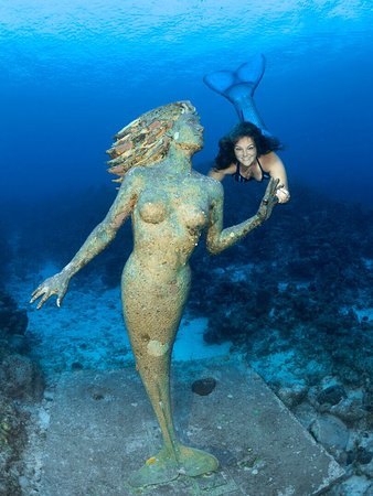 George Town, Grand Cayman: Join our mermaid school with our certified mermaid instructor!