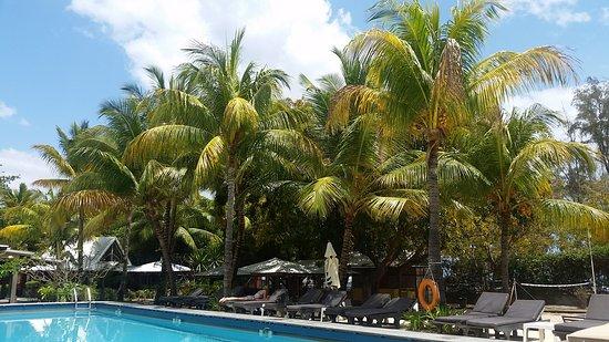 Hotel Tamarin: 20161013_085222_large.jpg