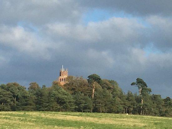 Faringdon Folly Tower and Woodland