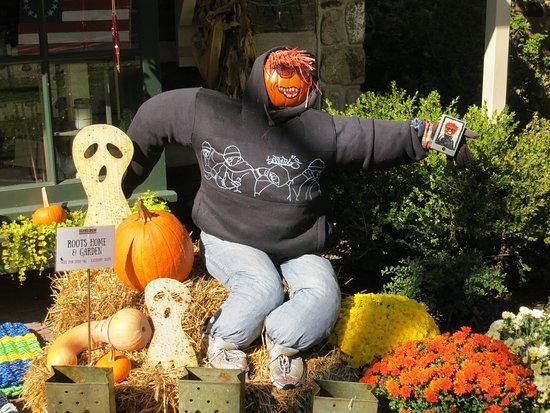 Lahaska, Πενσυλβάνια: A funny Scarecrow Display.