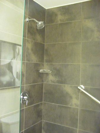 Lakewood, CO: Very Large Walk In Shower