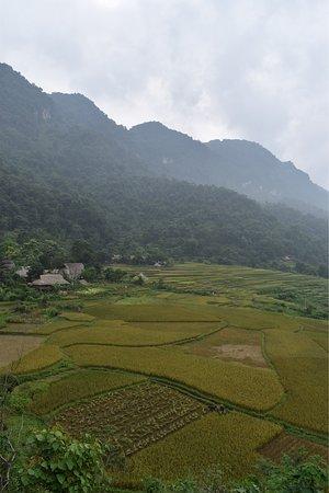 Отели Тхань-Хоа