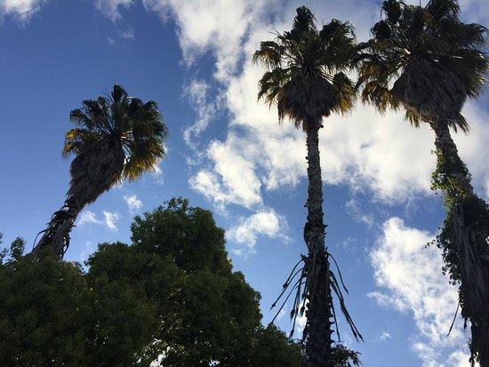 Stanford, Afrique du Sud : photo0.jpg