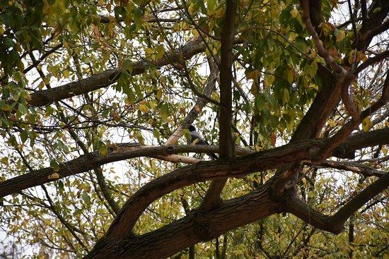 Macka Parkı: Zaman bulduğunuzda mutlaka uğrayın