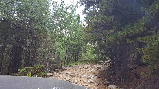 Boulder, CO: Pa Gulch Rd. ..experts only!