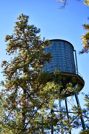 Browns Mills, Νιού Τζέρσεϊ: Village water tower