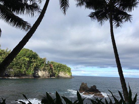 Hawaii Tropical Botanical Garden: photo3.jpg