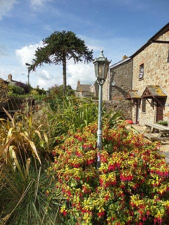 Marhamchurch, UK: Beautiful grounds