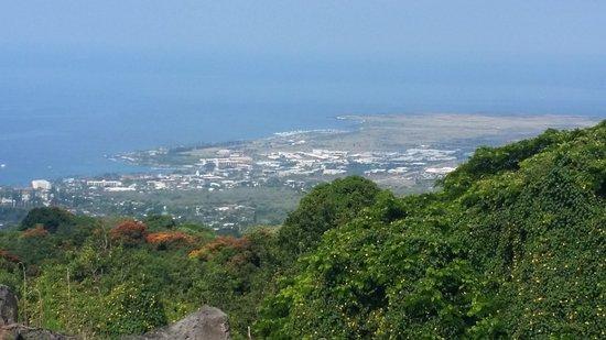 Holualoa, Hawaï: View from Coffee Farm