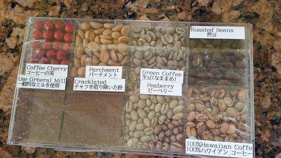 Holualoa, ฮาวาย: The Coffee Beans